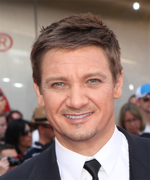 Jeremy Renner Short Straight Casual   Hairstyle   (Chestnut)