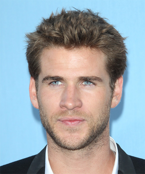 Liam Hemsworth Short Straight Casual Hairstyle Medium Brunette Ash