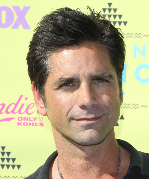 John Stamos Short Straight Casual Hairstyle Ash