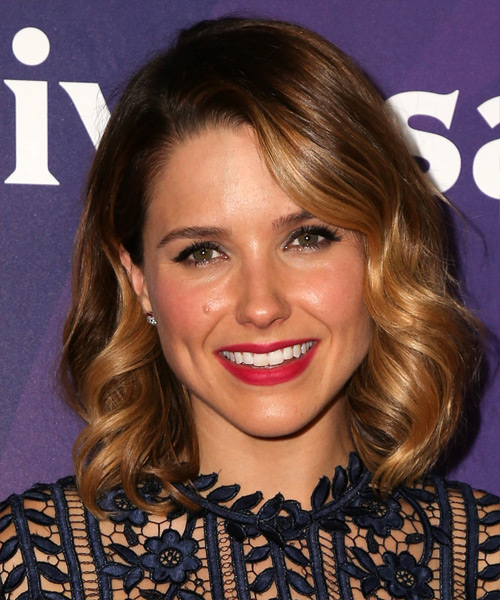 Sophia Bush Medium Wavy Formal    Hairstyle   - Medium Golden Brunette Hair Color with Dark Blonde Highlights