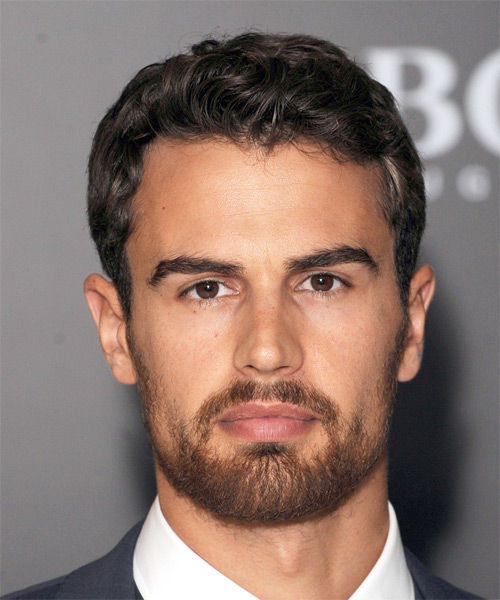 Theo James Short Wavy Formal   Hairstyle   - Dark Brunette
