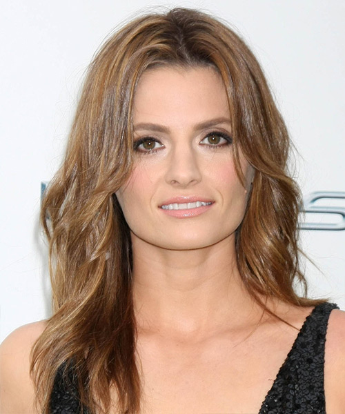 Stana Katic Long Straight Casual   Hairstyle   - Light Brunette