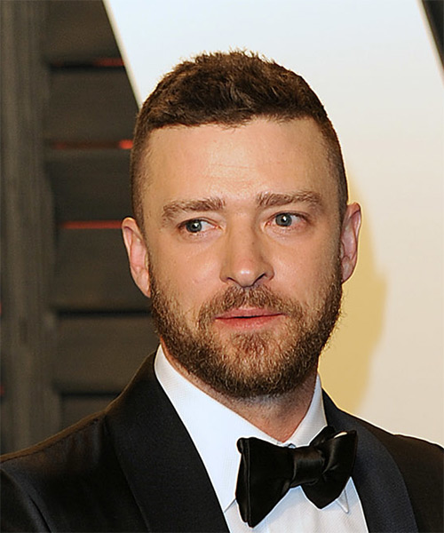 Justin Timberlake Short Straight    Brunette   Hairstyle