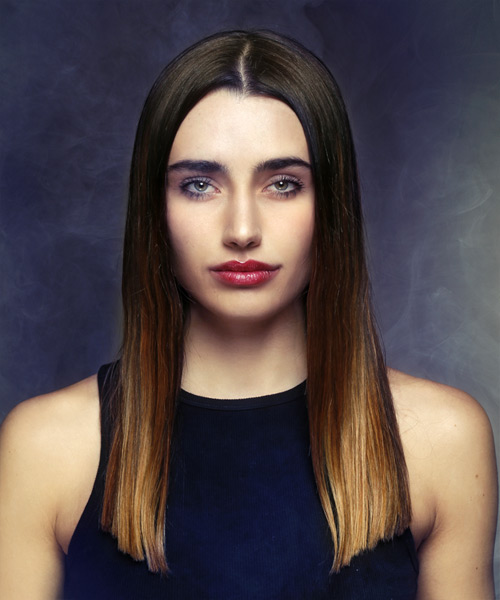 Long Straight Formal   Hairstyle   - Dark Brunette