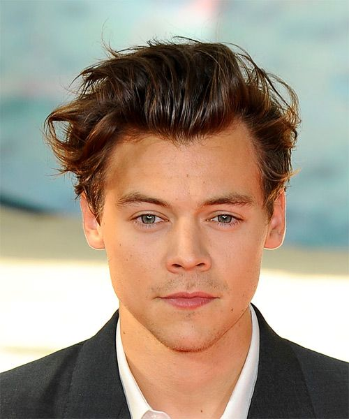 Harry Styles Short Wavy Casual Hairstyle Brunette Hair Color