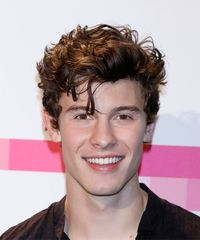 Shawn Mendes Short Wavy Casual    Hairstyle   -  Brunette Hair Color