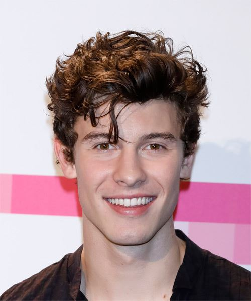 Shawn Mendes Short Wavy Casual Hairstyle Brunette Hair Color
