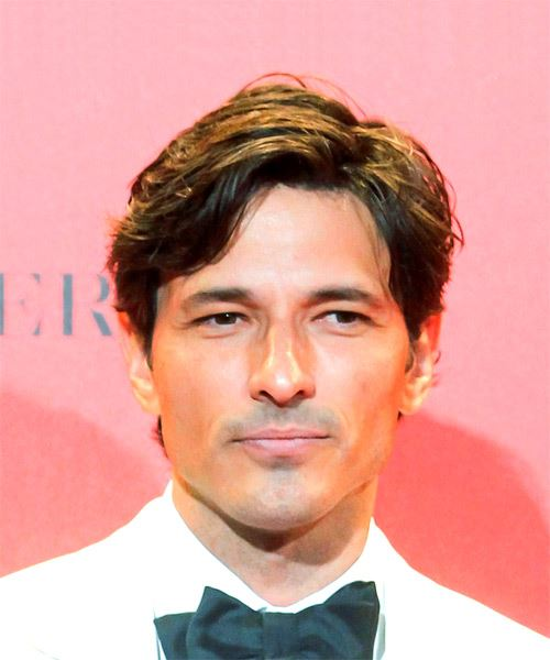 Andres Velencoso Short Wavy Casual    Hairstyle   -  Brunette Hair Color