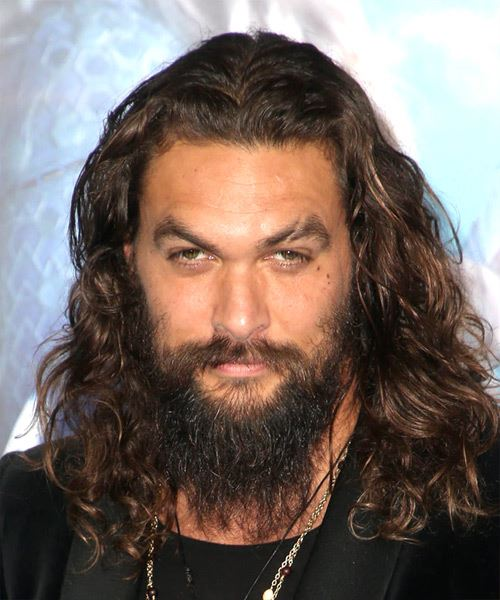 Jason Momoa Long Wavy   Dark Brunette and Dark Blonde Two-Tone Bob  Haircut with Layered Bangs