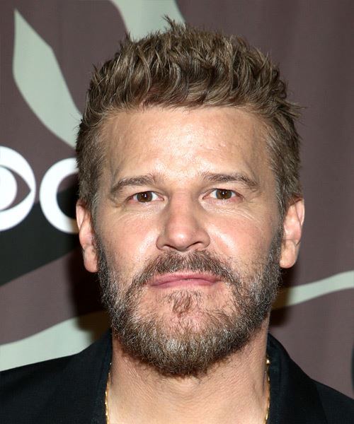 David Boreanaz Short Straight    Ash Blonde   Hairstyle