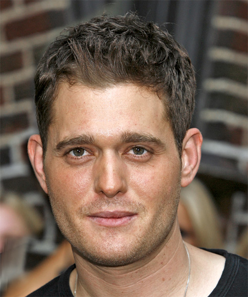 Michael Buble Short Straight Casual   Hairstyle