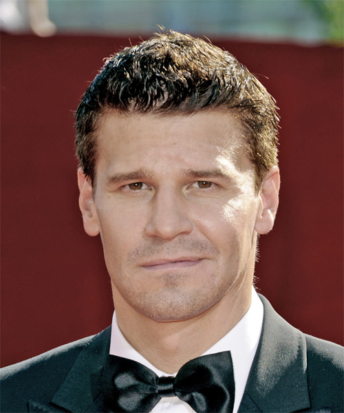 David Boreanaz Short Straight Casual   Hairstyle