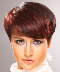 Short Straight Formal    Hairstyle with Layered Bangs  -  Burgundy Red Hair Color