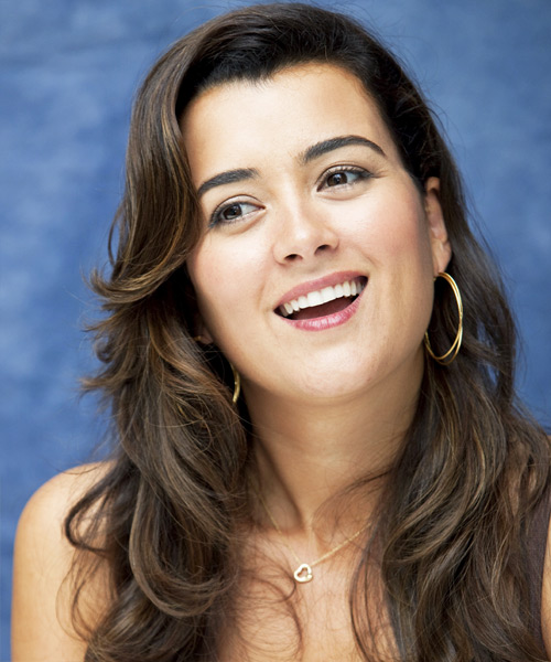 Cote de Pablo Long Wavy Formal   Hairstyle