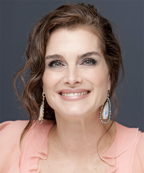 Brooke Shields Updo Long Curly Formal  Updo Hairstyle