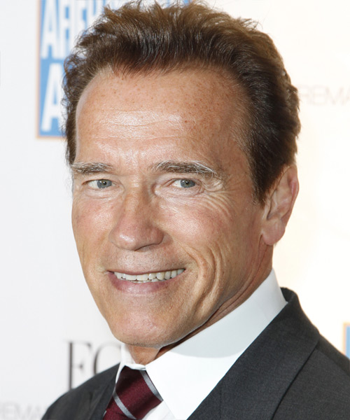 Arnold Schwarzenegger Short Straight Formal   Hairstyle