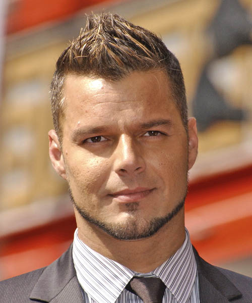 Ricky Martin Casual Short Straight Hairstyle Light