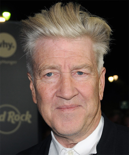David Lynch Short Straight Formal   Hairstyle