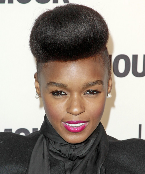 Janelle Monae Long Straight Black Updo