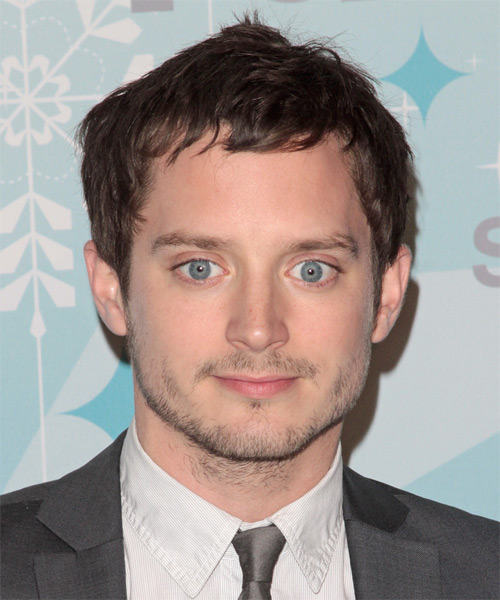 Elijah Wood Short Straight Casual   Hairstyle
