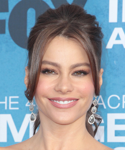 Sofia Vergara Updo Long Straight Formal Wedding Updo Hairstyle   - Medium Brunette