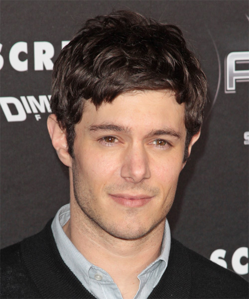 Adam Brody Short Straight Casual   Hairstyle with Side Swept Bangs  - Dark Brunette