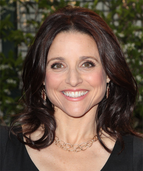 Julia Louis Dreyfus Medium Wavy Casual   Hairstyle   - Dark Brunette