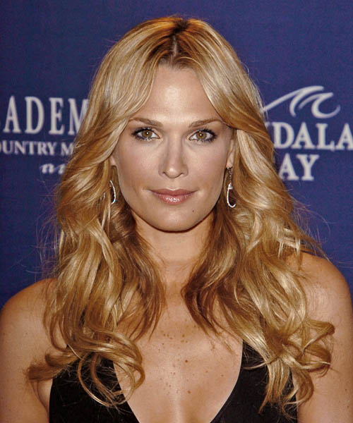 Molly Sims Long Wavy Formal   Hairstyle