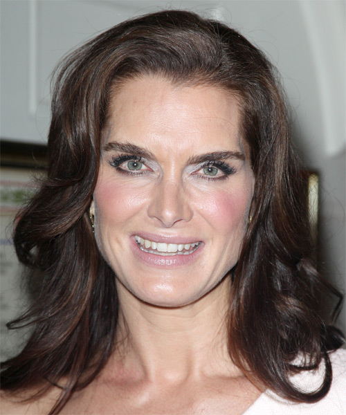 Brooke Shields Long Wavy Formal   Hairstyle   - Dark Brunette