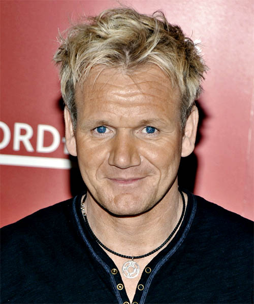 Gordon Ramsay Casual Short Straight Hairstyle Light