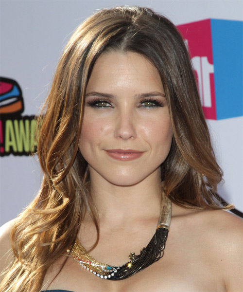 Sophia Bush Long Straight Casual    Hairstyle   - Chestnut Hair Color