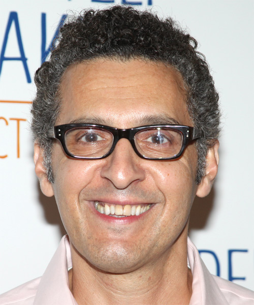 John Turturro  Short Curly Casual   Hairstyle   - Medium Grey