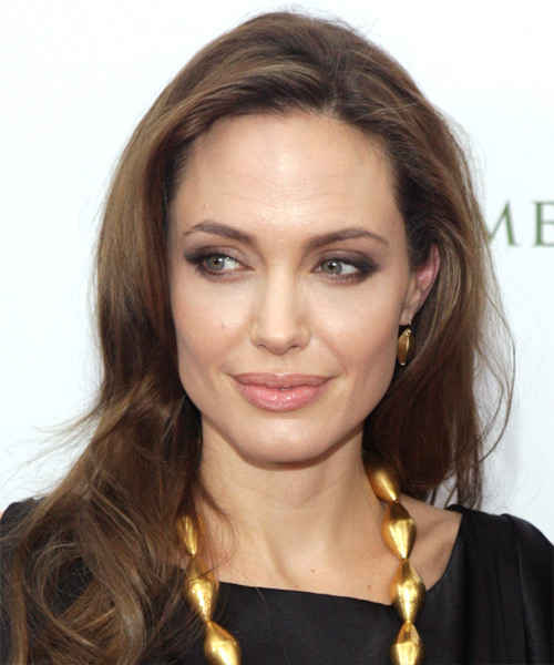 Angelina Jolie Long Straight Casual   Hairstyle   - Medium Brunette (Ash)