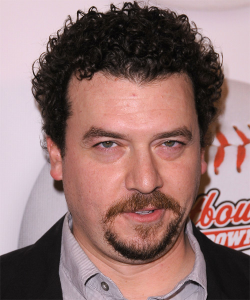 Danny McBride Short Curly Casual   Hairstyle   - Dark Brunette