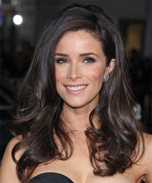 Abigail Spencer Long Wavy Formal    Hairstyle   - Chocolate Hair Color