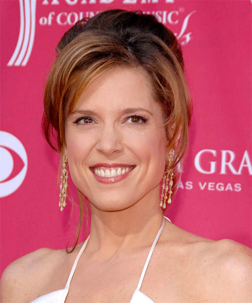 Hannah Storm Updo Medium Straight Formal  Updo Hairstyle