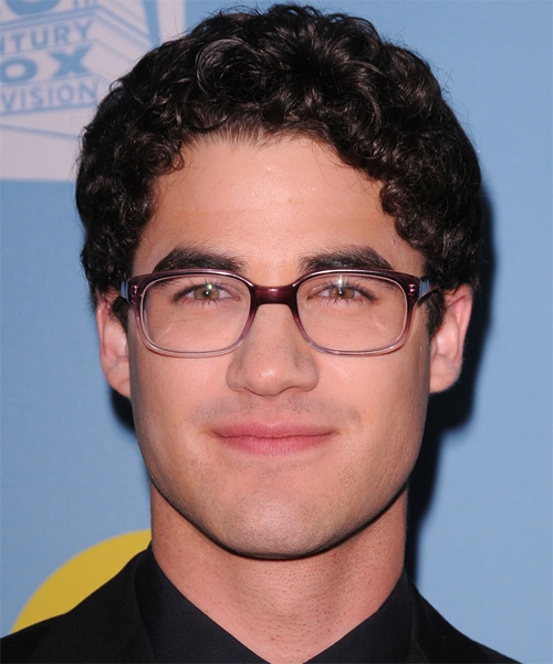 Darren Criss Short Curly Casual   Hairstyle   - Dark Brunette
