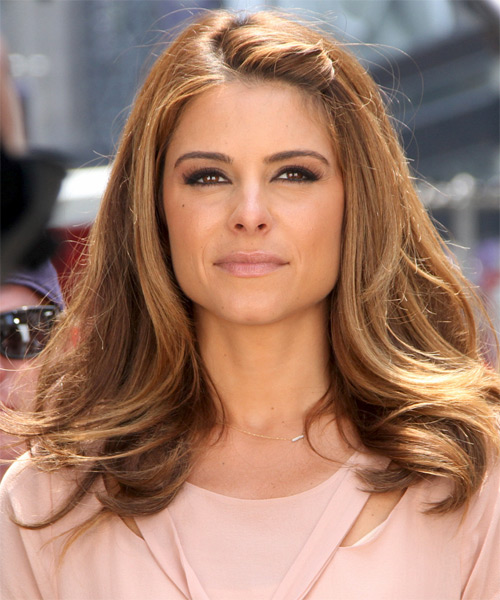 Maria Menounos Long Straight   Light Brunette   Hairstyle   with Dark Blonde Highlights