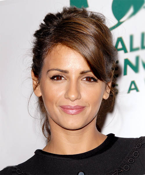 Monica Cruz  Long Straight Formal   Updo Hairstyle