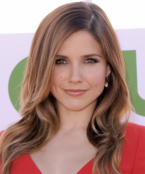 Sophia Bush Long Straight Casual    Hairstyle   - Light Chestnut Brunette Hair Color with Light Brunette Highlights