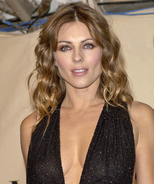 Elizabeth Hurley Long Curly Formal Hairstyle