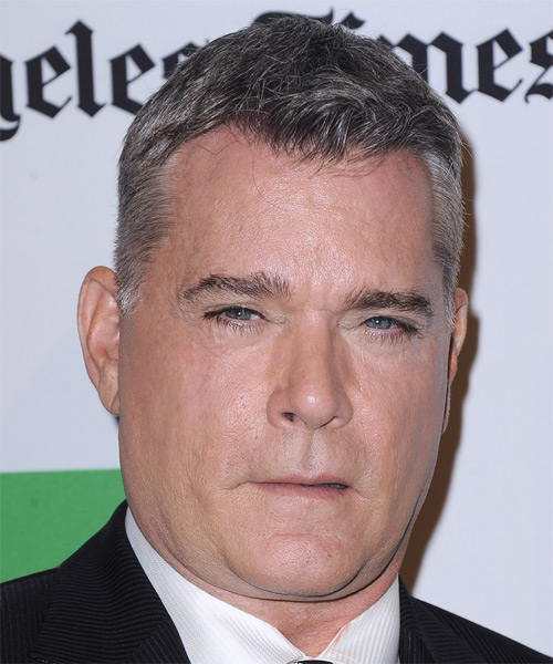Ray Liotta Short Straight Casual   Hairstyle   - Medium Grey