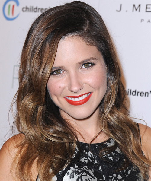 Sophia Bush Long Straight Casual    Hairstyle   - Medium Chocolate Brunette Hair Color with Dark Blonde Highlights