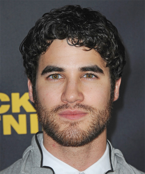 Darren Criss Short Curly Casual   Hairstyle   - Black