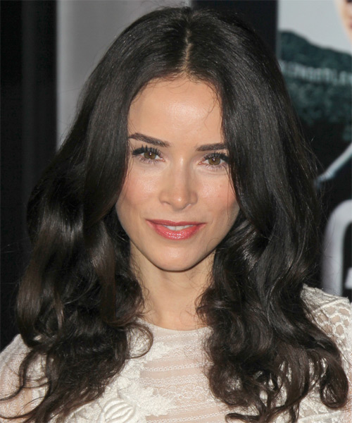 Abigail Spencer Long Wavy Casual    Hairstyle   - Dark Brunette Hair Color