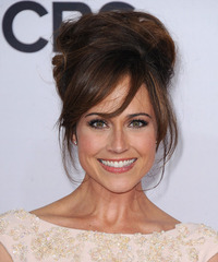 Nikki DeLoach  Long Straight Formal   Updo Hairstyle with Side Swept Bangs  -  Auburn Brunette Hair Color