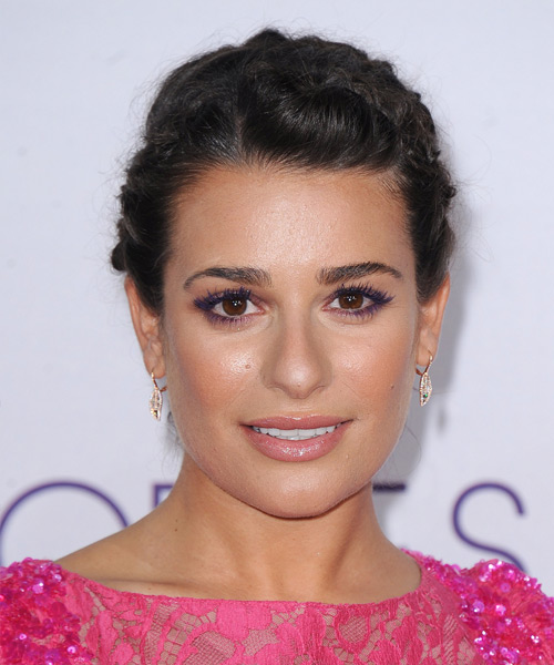 Lea Michele  Long Straight Casual  Braided Updo Hairstyle   - Dark Brunette Hair Color