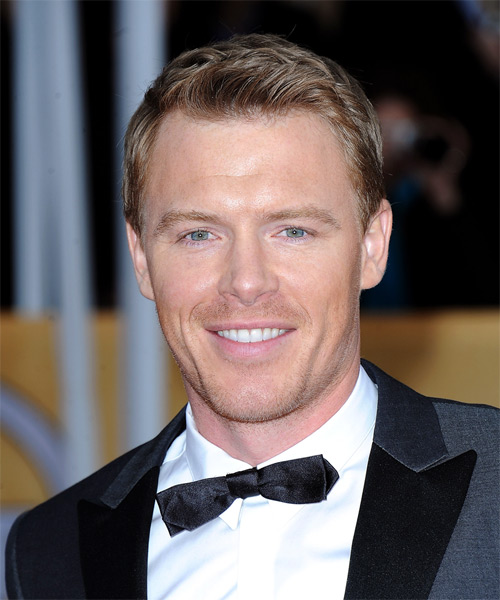 Diego Klattenhoff  Short Straight Formal    Hairstyle   -  Copper Blonde Hair Color with Light Blonde Highlights