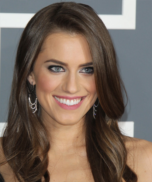 Allison Williams Long Straight Formal   Hairstyle   - Medium Brunette (Chestnut)