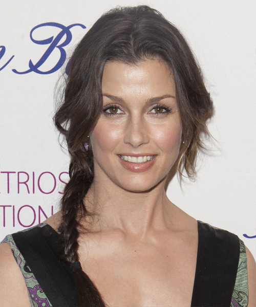 Bridget Moynahan Updo Long Straight Casual Braided Updo Hairstyle   - Medium Brunette